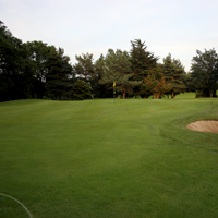 Forrest-Little-11th-Hole